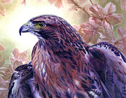 Cherry Blossom Prints - Red Tailed Hawk Print by Alan  Hawley