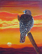 Red Tail Hawk Paintings - Red-Tailed Hawk by Fran Brooks