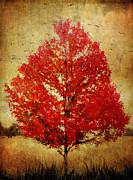 Margaret Hormann Bfa - Red Tree