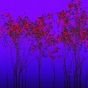 Gabriella Weninger - David - Red Trees In Blue