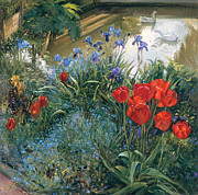 Ponds Painting Posters - Red Tulips and Geese  Poster by Timothy Easton