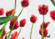 Still Life Paintings - Red Tulips from the Bottom Up lll by Michelle Calkins