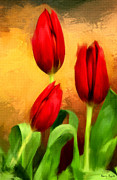 Botanical Digital Art Framed Prints - Red Tulips Triptych Section 2 Framed Print by Lourry Legarde