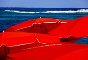 Sun Umbrella Posters - Red Umbrellas  Poster by Karen Wiles