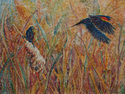 Robyn Ryan - Red Winged Black Bir...