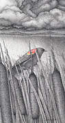Blackbird Drawings Metal Prints - Red-winged Blackbird Metal Print by Wayne Hardee