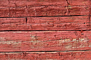 Wooden Paneling Prints - Red Wood Background Print by Brandon Bourdages