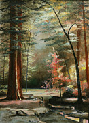 Oil On Masonite Posters - Red Wood Forest Poster by Cecilia  Brendel