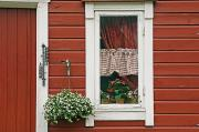 Clapboard House Prints - Red Wooden House With Plants In And By Print by Chris Parker