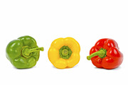 Fruits And Vegetables Framed Prints - Red Yellow and Green Pepper Framed Print by Chevy Fleet
