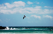 Kite Surfing Originals - RedBull King of the Air Competition Cape Town South Africa by Charl Bruwer