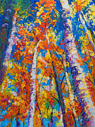 Palette Knife Art Posters - Redemption - fall birch and aspen Poster by Talya Johnson