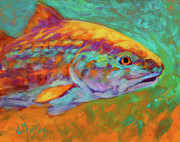 Fishing Paintings - RedFish Portrait by Mike Savlen