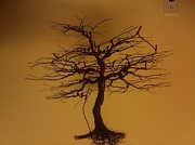 Wire Tree Sculptures - Redoak by Brian Boyer
