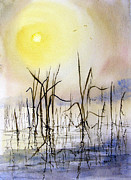 Pond Paintings - Reeds by Sam Sidders