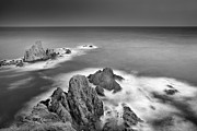 Sea Framed Prints - Reef Framed Print by Guido Montanes Castillo