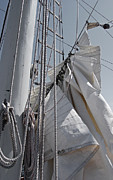 Reefing The Mainsail Print by Jani Freimann