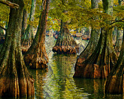 Waterscape Digital Art Framed Prints - Reelfoot Lake Cypress Framed Print by J Larry Walker