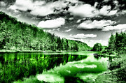 Lanscape Digital Art - Reflected Greens by David Patterson