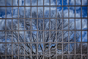 Reflections - Reflected Park 3 by Robert Ullmann