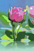 Linda  Smith - Reflected Rose