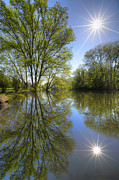 Oak Creek Prints - Reflected Star Print by Debra and Dave Vanderlaan
