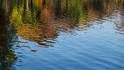 Reflection On Calm Pond Prints - Reflecting on Autumn - Washington D C Print by Georgia Mizuleva