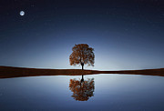 Bess Hamiti - Reflection