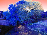 Altered Photograph Photos - Reflection in Blue by Diane  Miller