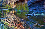 West Fork Photo Originals - Reflection in the Water by Brian Lambert