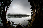 Brian Xavier - Reflection Lake Through...