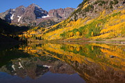 Maroon Bells Posters - Reflection of Maroon Bells during autumn Poster by Jetson Nguyen