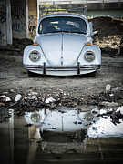 Scott  Wyatt - Reflection of the Beetle