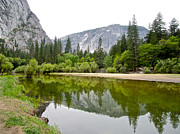 Reflection Of Trees In Lake Prints - Reflection of Trees in Mirror Lake in Yosemite Valley-2013 Print by Ruth Hager