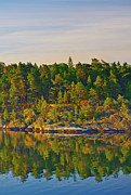 Reflections 2 Sweden Print by Marianne Campolongo