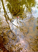Trees Reflecting In Water Metal Prints - Reflections Metal Print by Delona Seserman