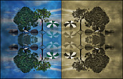 Tree Creature Prints - Reflections Print by Betsy A Cutler East Coast Barrier Islands