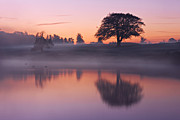 Riverscape - Early Autumn Prints - Reflections in a Lake at Dawn / Maynooth Print by Barry O Carroll