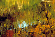 Pond In Park Prints - Reflections in Pond Print by Harold E McCray