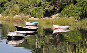 Boats In Harbor Prints - Reflections Print by John Sarnie