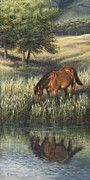 Wild Horse Prints - Reflections Print by Kim Lockman