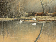Reflections Print by Mary Ann King