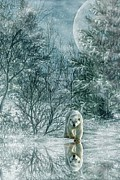 Winter Landscape Digital Art Prints - Reflections of a Polar bear Print by Lee-Anne Rafferty-Evans