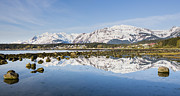 Tim Grams Acrylic Prints - Reflections of Haines Alaska Acrylic Print by Tim Grams