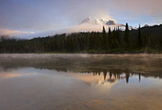 Mt Rainier Prints - Reflections of Majesty Print by Mike  Dawson