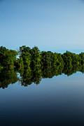 Karol  Livote - Reflections Of Summer