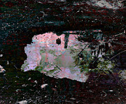 Puerto Rico Mixed Media Originals - Reflective Skylight on a Small Pond of Water # 1 by Miguel Conesa Osuna