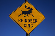 Road Sign Prints - Reindeer Xing Print by Garry Gay