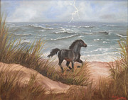Black Stallion Paintings - Released by Jan Holman