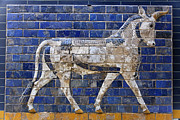 Babylon Posters - Relief from Ishtar Gate in Babylon Poster by Robert Preston
